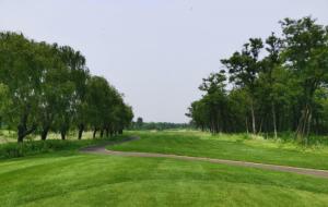 河北荣盛黄金海岸高尔夫俱乐部森林场
